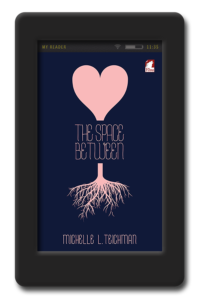 Cover of the lesbian young adult novel The Space Between by Michelle Teichman