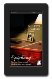 Cover of the collection of writing by Paulette Callen