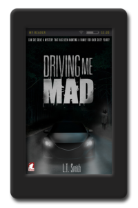 Cover of the lesbian paranormal romance Driving me Mad by LT Smith