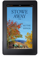 Cover to Ylva Publishing's Stowe Away by Blythe Rippon