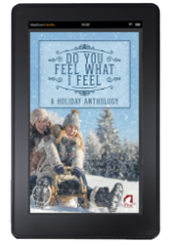 Do You Feel What I Feel - A Holiday Anthology
