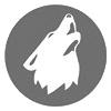 bio-pic-ylva-logo-gray_100x100