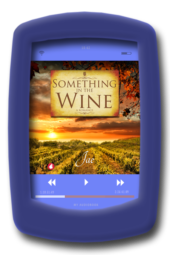 Audiobook cover of the lesbian fake-relationship romance Something in the Wine by Jae
